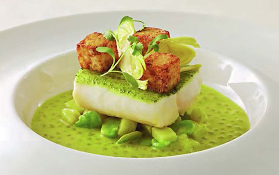 Striped Bass In Cilantro Recipe