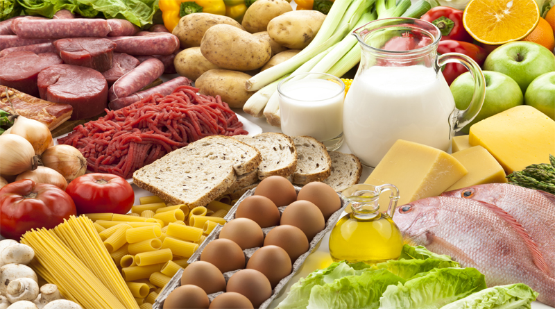 Fact about protein diet you need to know while having your protein