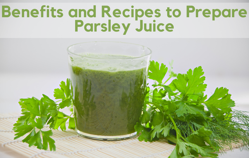 Parsley Juice: Learn the Benefits and Recipes to Prepare